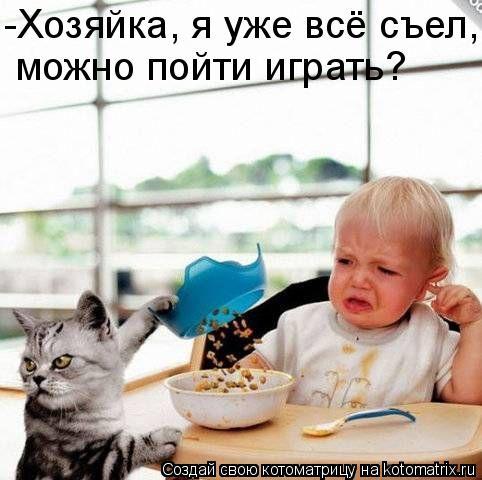 Котоматрица: -Хозяйка, я уже всё съел, можно пойти играть?