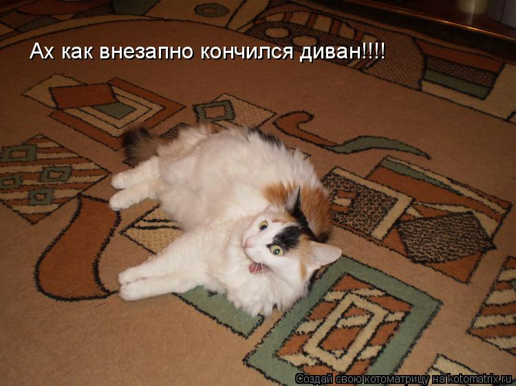 Котоматрица: Ах как внезапно кончился диван!!!!