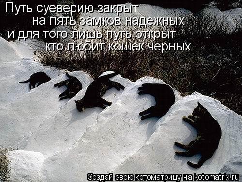 Котоматрица: Путь суеверию закрыт на пять замков надежных и для того лишь путь открыт  кто любит кошек черных