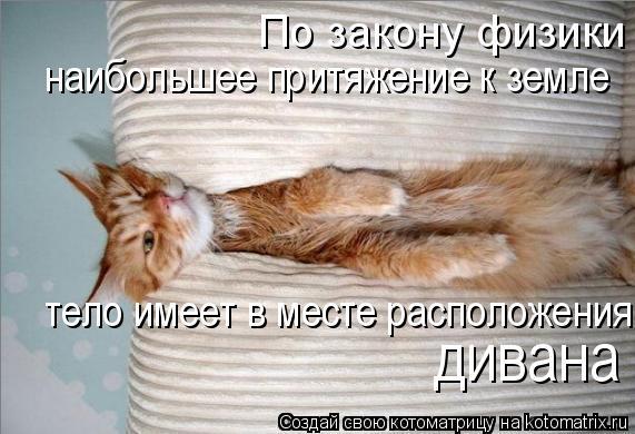 Котоматрица: По закону физики наибольшее притяжение к земле тело имеет над диваном. наибольшее притяжение к земле  тело имеет в месте расположения дива