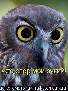 Котоматрица: -кто спёр мои очки?!