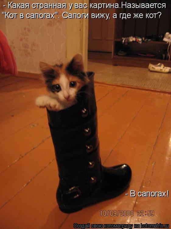"""Котоматрица: - Какая странная у вас картина.Называется  """"Кот в сапогах"""". Сапоги вижу, а где же кот?  - В сапогах!"""