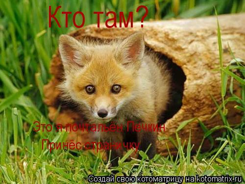 Котоматрица: Кто там? Это я почтальён Печкин Принёс страничку