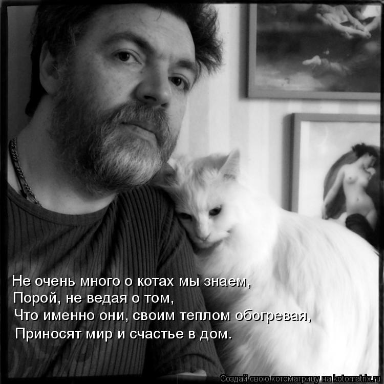 Котоматрица: Не очень много о котах мы знаем, Порой, не ведая о том, Что именно они, своим теплом обогревая, Приносят мир и счастье в дом.