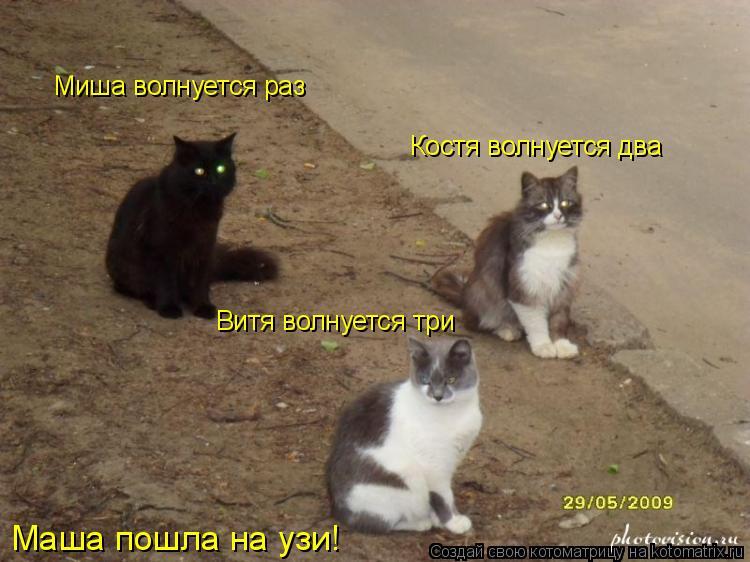Котоматрица: Миша волнуется раз Костя волнуется два Витя волнуется три Маша пошла на узи!