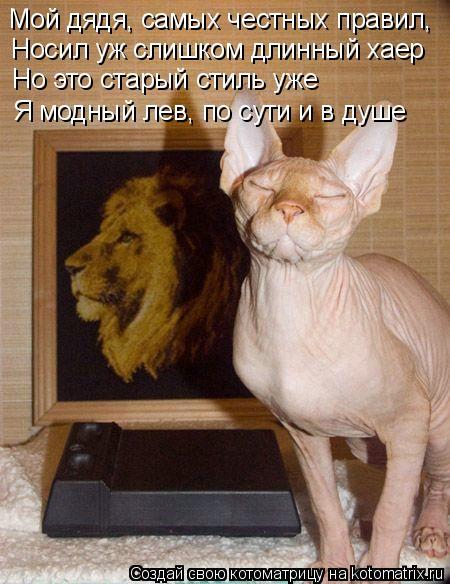 Котоматрица: Мой дядя, самых честных правил, Носил уж слишком длинный хаер Но это старый стиль уже Я модный лев, по сути и в душе