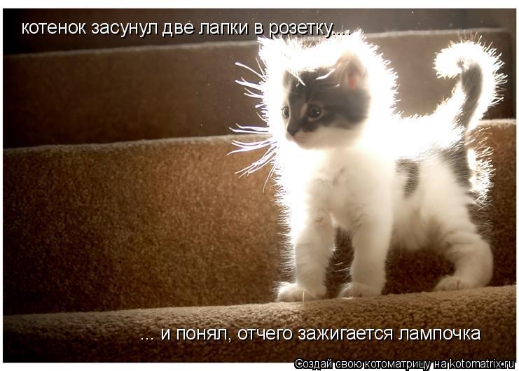 Котоматрица: котенок засунул две лапки в розетку.... ... и понял, отчего зажигается лампочка