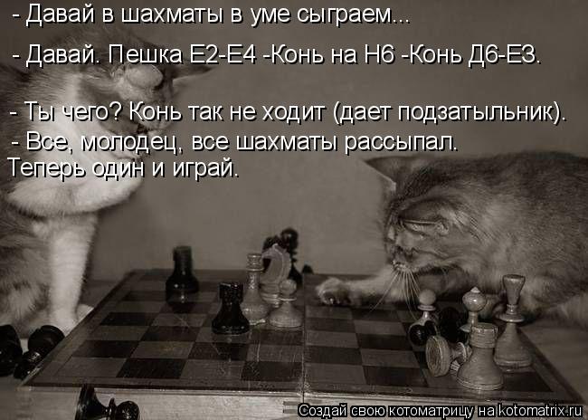 Котоматрица: - Давай в шахматы в уме сыграем... - Ты чего? Конь так не ходит (дает подзатыльник). - Все, молодец, все шахматы рассыпал. - Давай. Пешка Е2-Е4 -Конь