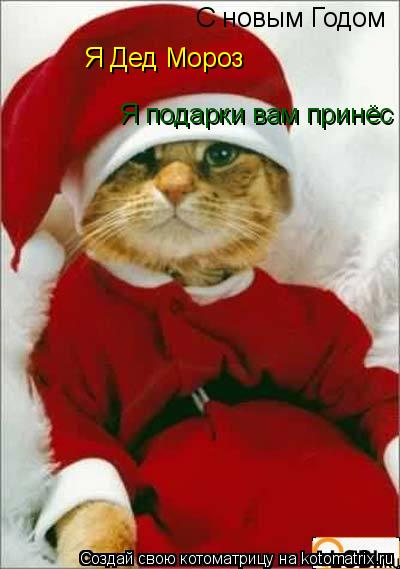 Котоматрица: С новым Годом  Я Дед Мороз Я подарки вам принёс