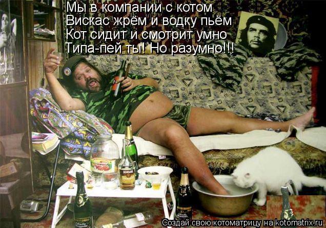 Котоматрица: Мы в компании с котом Вискас жрём и водку пьём Кот сидит и смотрит умно Типа-пей ты! Но разумно!!!