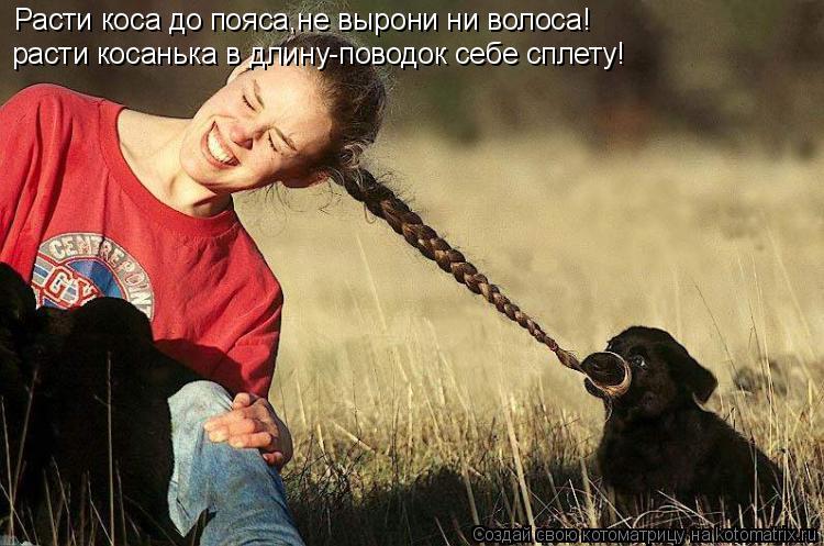 Котоматрица: Расти коса до пояса,не вырони ни волоса! расти косанька в длину-поводок себе сплету!