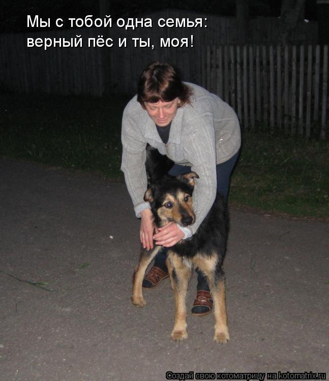 Котоматрица: Мы с тобой одна семья: верный пёс и ты, моя!