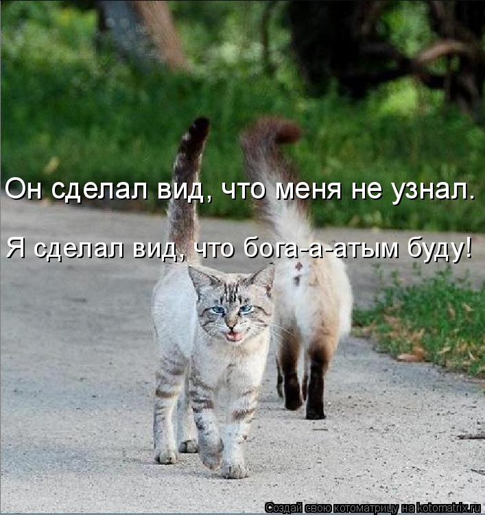 Котоматрица: Он сделал вид, что меня не узнал.  Я сделал вид, что бога-a-aтым буду!