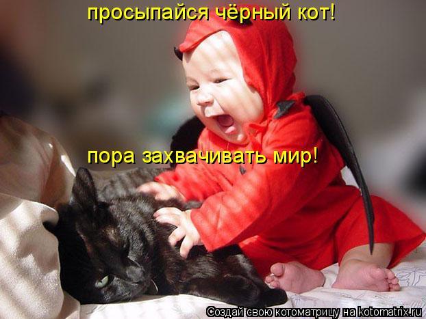 Котоматрица: просыпайся чёрный кот! пора завоёва пора завоёва пора захвачивать мир!