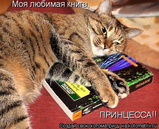 Котоматрица: Моя любимая книга, ПРИНЦЕССА !!