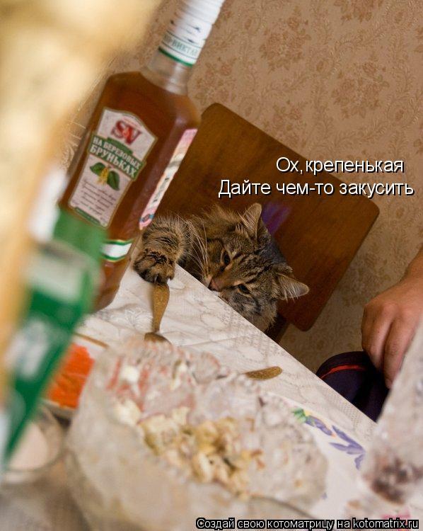 Котоматрица: Ох,крепенькая Дайте чем-то закусить