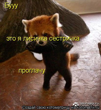 Котоматрица: Бууу это я лисичка сестричка проглачу