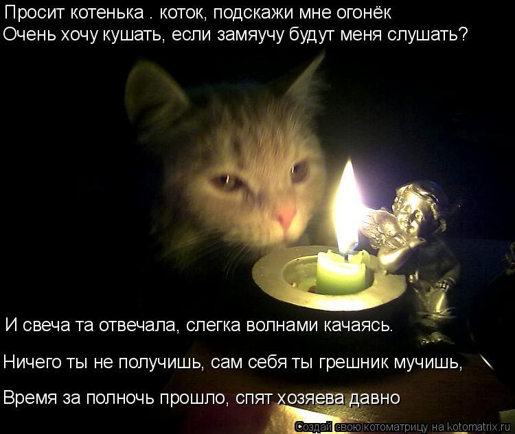 Котоматрица: Просит котенька – коток, подскажи мне огонёк Очень хочу кушать, если замяучу будут меня слушать? И свеча та отвечала, слегка волнами качаяс