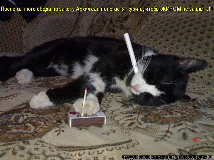 Котоматрица: После сытного обеда по закону Архимеда пологаетя  курить, чтобы ЖИРОМ не заплыть!!! xD