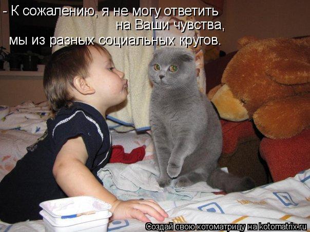 Котоматрица: - К сожалению, я не могу ответить  на Ваши чувства, мы из разных социальных кругов.