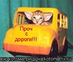 Котоматрица: Проч с дороги!!!