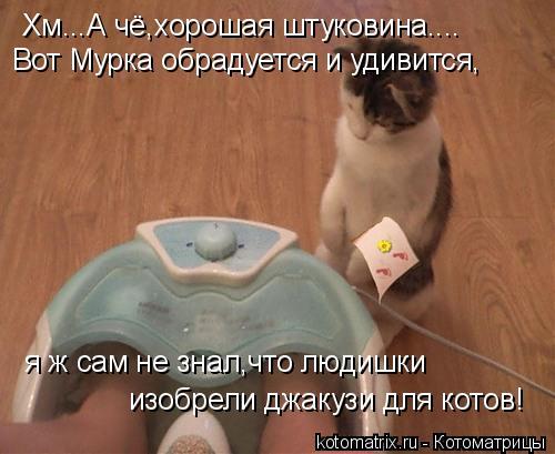 Котоматрица: Хм...А чё,хорошая штуковина.... Вот Мурка обрадуется и удивится, я ж сам не знал,что людишки  изобрели джакузи для котов!