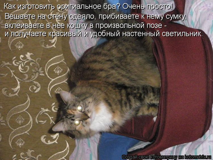 Котоматрица: Вешаете на стену одеяло, прибиваете к нему сумку,  вклеиваете в нее кошку в произвольной позе -  Как изготовить оригиальное бра? Очень просто
