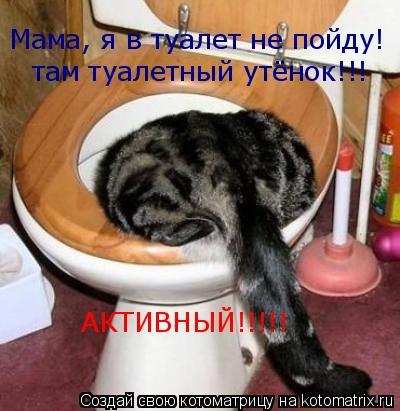 Котоматрица: Мама, я в туалет не пойду! там туалетный утёнок!!! АКТИВНЫЙ!!!!!