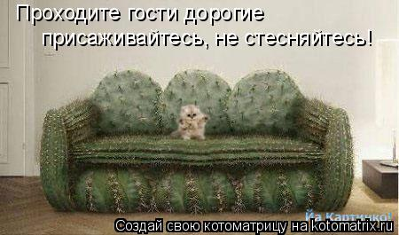 Котоматрица: Проходите гости дорогие присаживайтесь, не стесняйтесь!