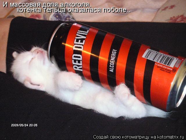 Котоматрица: И массовая доля алкоголя, котёнка тельца оказалася поболе..