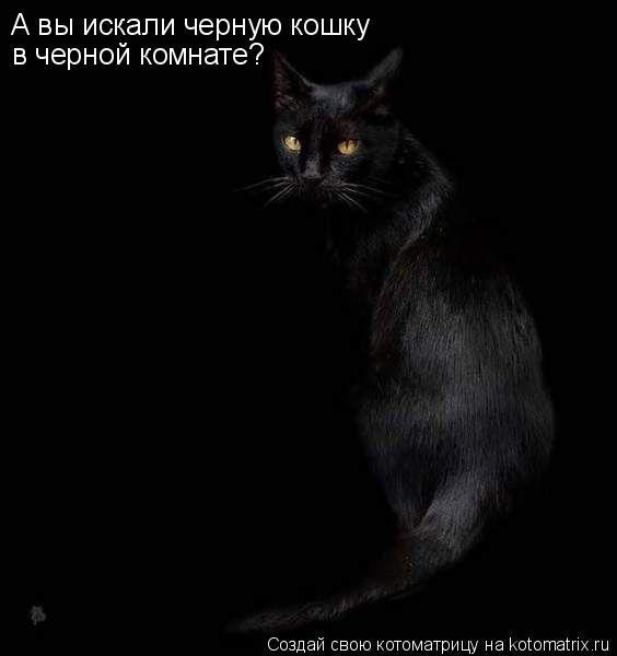 Котоматрица: А вы искали черную кошку в черной комнате?