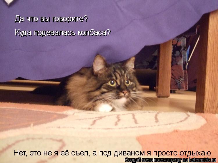 Котоматрица: Да что вы говорите? Куда подевалась колбаса? Нет, это не я её съел, а под диваном я просто отдыхаю