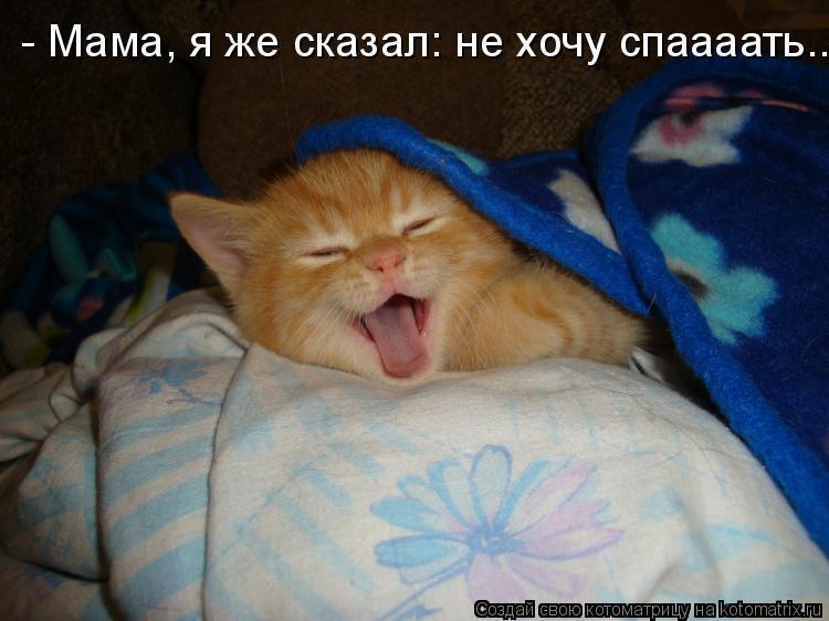 Котоматрица: - Мама, я же сказал: не хочу спаааать..
