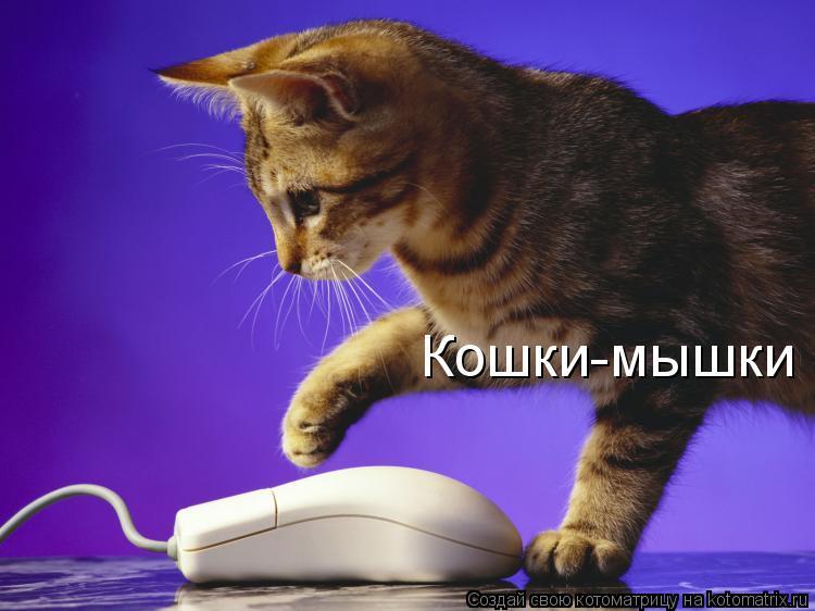 Котоматрица: Кошки-мышки