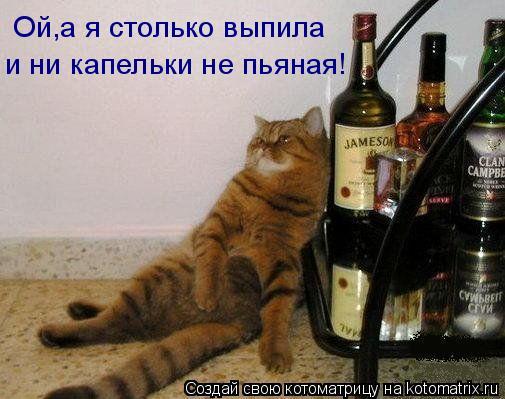 Котоматрица: Ой,а я столько выпила и ни капельки не пьяная!