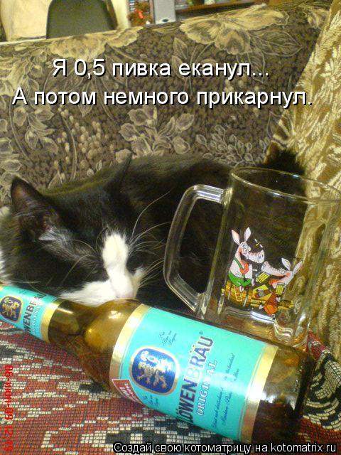 Котоматрица: Я 0,5 пивка еканул... А потом немного прикарнул.