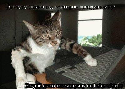 Котоматрица: Где тут у хозяев код от дверцы холодильника?