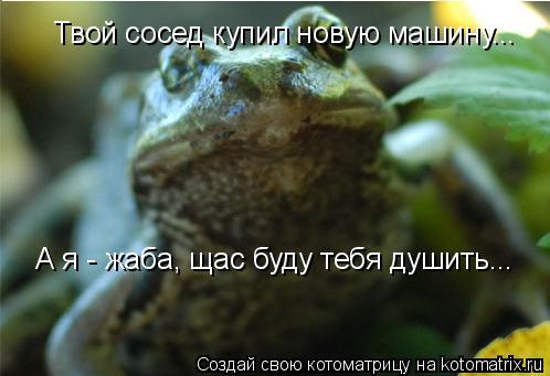 Котоматрица: Твой сосед купил новую машину... А я - жаба, щас буду тебя душить...