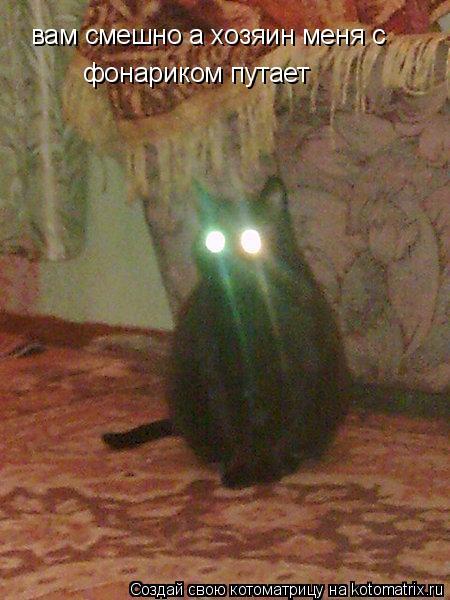 Котоматрица: вам смешно а хозяин меня с  фонариком путает