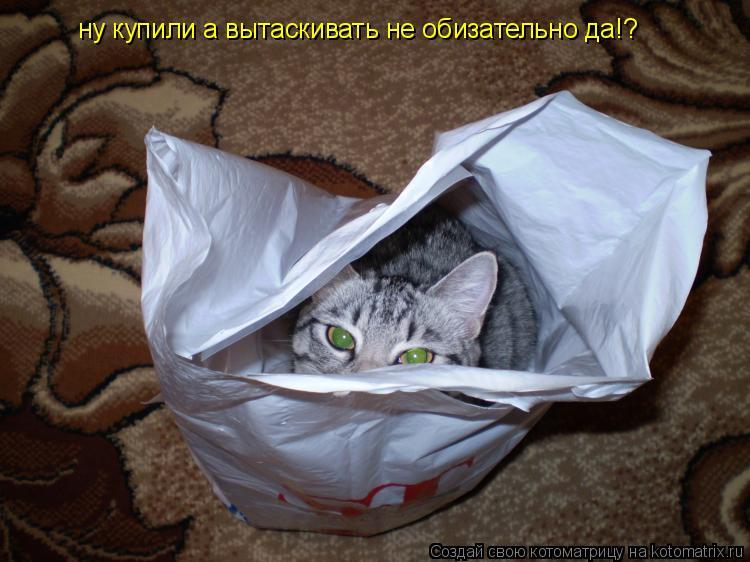 Котоматрица: ну купили а вытаскивать не обизательно да!?