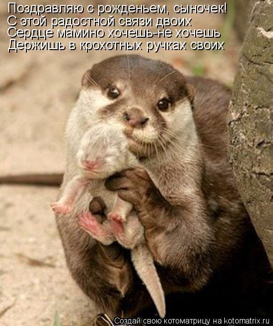 Котоматрица: Поздравляю с рожденьем, сыночек! С этой радостной связи двоих Сердце мамино хочешь-не хочешь Держишь в крохотных ручках своих