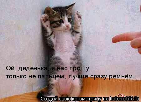 Котоматрица: Ой, дяденька, я вас прошу  только не пальцем, лучше сразу ремнём