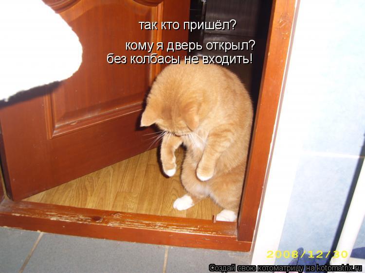 Котоматрица: так кто пришёл? кому я дверь открыл? без колбасы не входить!