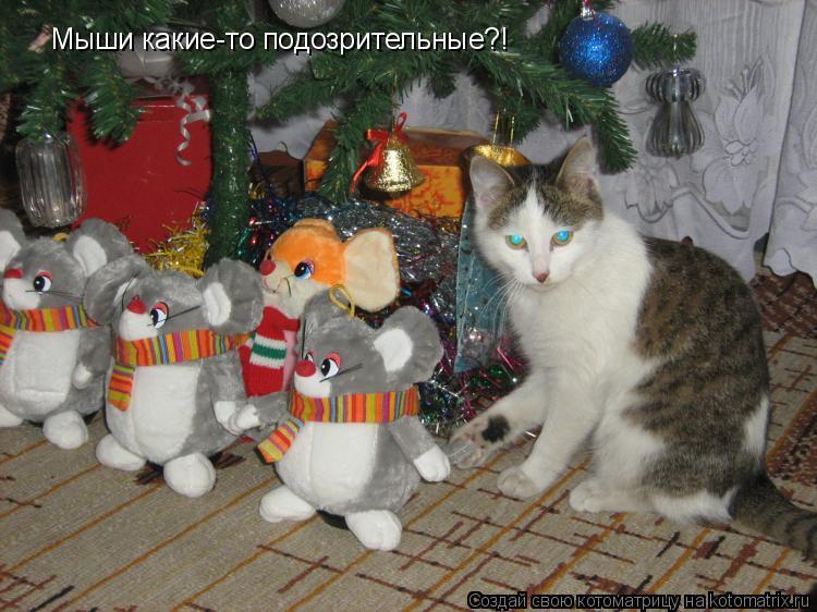 Котоматрица: Мыши какие-то подозрительные?!