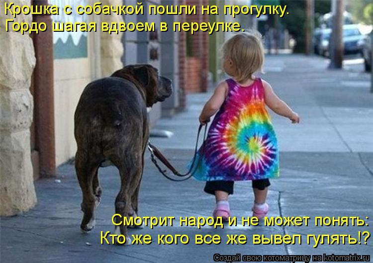 Котоматрица: Крошка с собачкой пошли на прогулку. Гордо шагая вдвоем в переулке. Смотрит народ и не может понять: Кто же кого все же вывел гулять!?