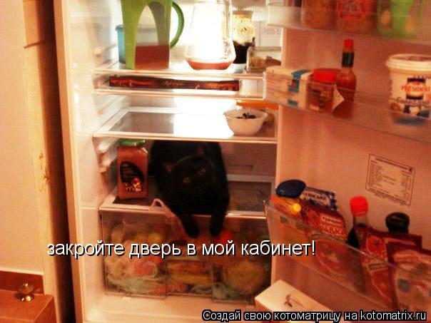 Котоматрица: закройте дверь в мой кабинет!