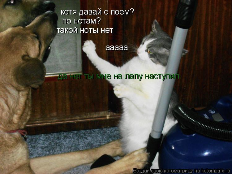 Котоматрица: котя давай с поем? по нотам? ааааа такой ноты нет да нет ты мне на лапу наступил