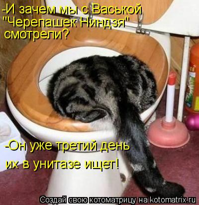 """Котоматрица: -И зачем мы с Васькой  """"Черепашек Ниндзя""""  смотрели? -Он уже третий день их в унитазе ищет!"""