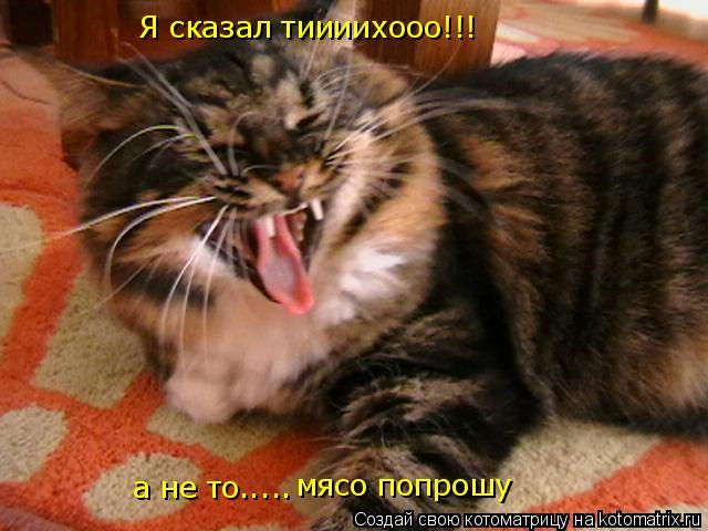 Котоматрица: Я сказал тиииихооо!!! а не то..... мясо попрошу