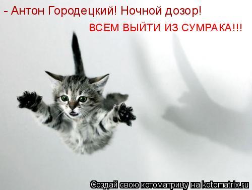 Котоматрица: - Антон Городецкий! Ночной дозор! ВСЕМ ВЫЙТИ ИЗ СУМРАКА!!!